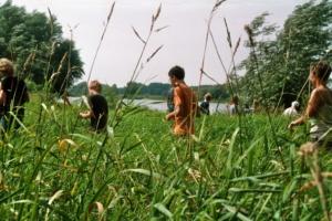 Wildnis an der Elbe